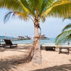 Sihanoukville 129 khách sạn