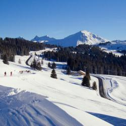 Morzine 6 vacation homes