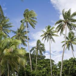 Paea 5 holiday rentals