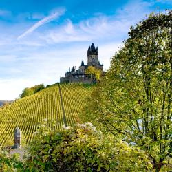 Cochem 116 vacation rentals