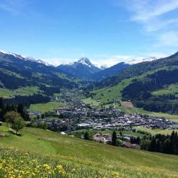 Kirchberg in Tirol 201 hotels