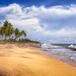 Negombo 210 homestays