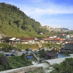 Tanah Rata 3 hostels