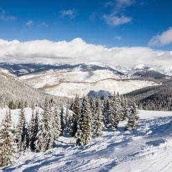 Vail 32 self catering properties