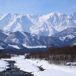 Hakuba 29 lodges