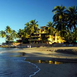 Nuevo Vallarta 16 hoteles que admiten mascotas