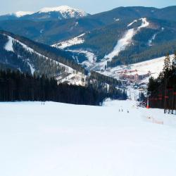 Bukovel 238 hotels