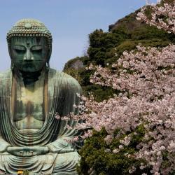 Kamakura 89 hoteles