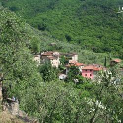 Montemagno 29 hotels