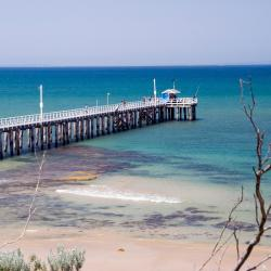 Queenscliff 47 hotels
