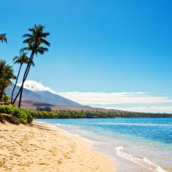 Kawailoa Beach 1 hotel