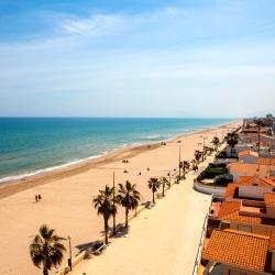Playa de Miramar 5 pet-friendly hotels