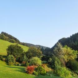 Weißkirchen in Steiermark 9 Hotels
