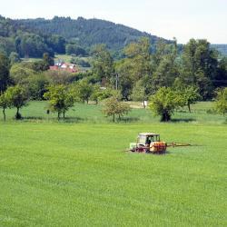 Mossautal 4 farm stays