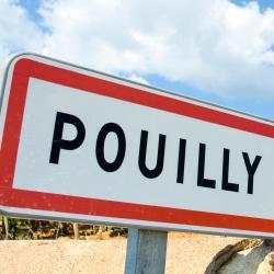 Solutré-Pouilly 1 hotel