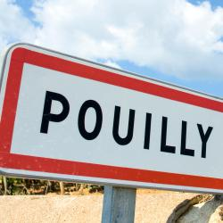 Solutré-Pouilly 1 ξενοδοχείο