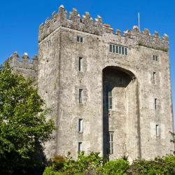 Bunratty 42 hotels