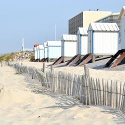 阿爾德洛海灘 3 間海灘飯店