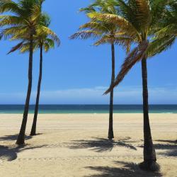 Palm Beach Shores 10 hotels