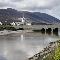 Tralee 7 homestays