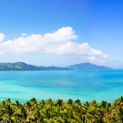 Île Hamilton 119 hôtels