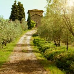 Greve in Chianti 175 Hotels