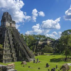 Tikal 4 hotely