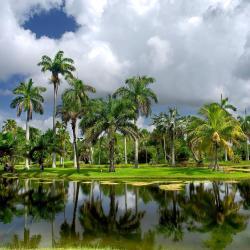 Miami Gardens 10 hotels