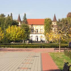 Banja Koviljača 71 holiday rentals
