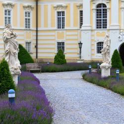 Altenburg 22 hotels
