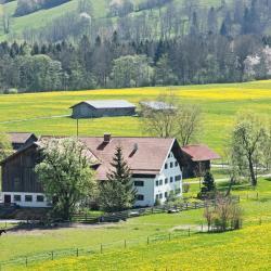 Waldkraiburg 5 Hotels