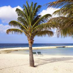 Oranjestad 15 hotels