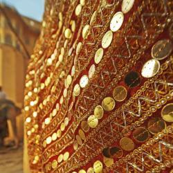 Chandwaji 5 hotels