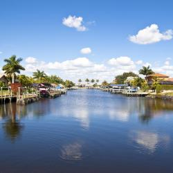 Cape Coral 494 hotels