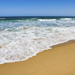 Avoca Beach 24 hotels