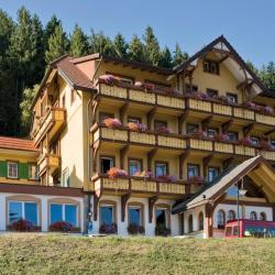 Breitnau 9 hotels