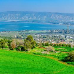 Neot Golan 11 hotels