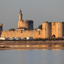 Aigues-Mortes 111 hoteller