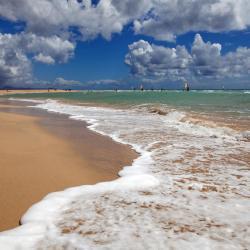 Playa de Jandía 19 hoteles