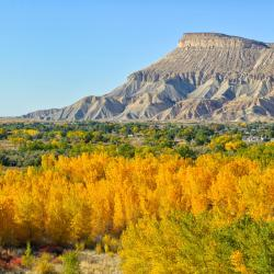 Grand Junction 4 self catering properties