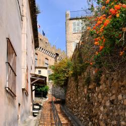 Roques Sur Garonne 4 hotels