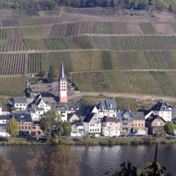 Zell an der Mosel 74 vacation rentals
