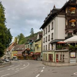 Triberg 4 guest houses