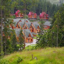 Mykulychyn 23 cabins