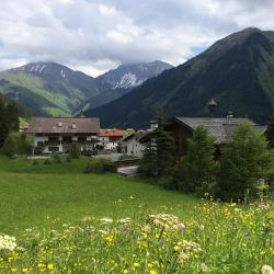 Berwang 31 pet-friendly hotels
