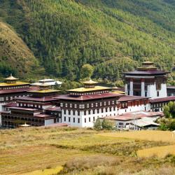 Thimphu 77 hotels