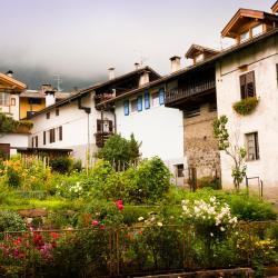 Tesero 50 hotels