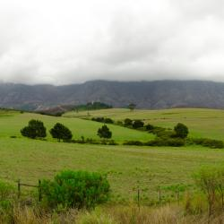 Swellendam 10 farm stays
