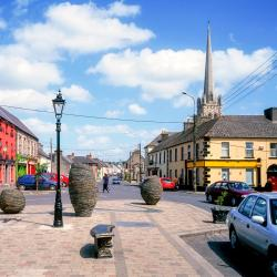 Carlow 16 cheap hotels