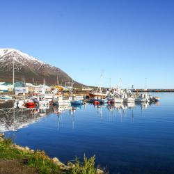 Dalvík 11 hotels